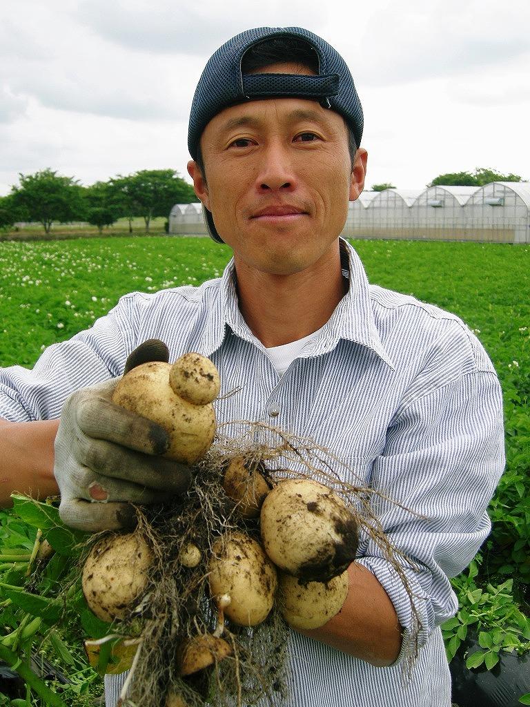 有機野菜 果物 無農薬野菜 販売 愛知県 野菜の保存